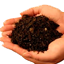 sri lanka coco peat, cocos plus unwashed raw coco peat Potting soil in index page